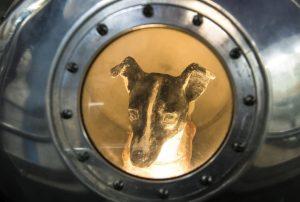 Laika-Sputnik-russia-history-space-animal